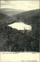 Niedersachsen Harz ~1900 Spiegelthaler See Gruss aus Postkarte Spiegeltal Blick