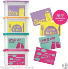 New Tupperware Modular Mates Square II 4pc Set with Print Free 4 Placemats