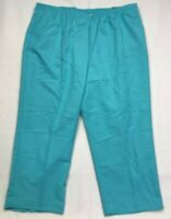 Alfred Dunner Womens Proportioned Short Pants Blue Classic Fit Plus 24W New