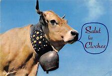 BT9256 salut les cloches france cow vache animal animaux