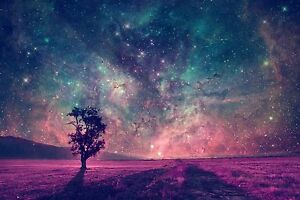 """Fantasy Purple Tree - Abstract Stars Sky Colourful Large Canvas Picture 20x30"""""""