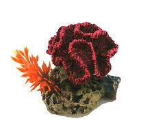 Rose Ondulé Corail Sur un Rocher Base avec Plante Décoration D'Aquarium