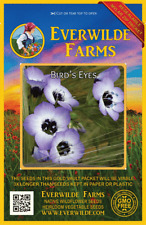 2000 Bird's Eyes Wildflower Seeds - Everwilde Farms Mylar Seed Packet