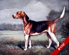English Foxhound Pet Puppy Hunting Dog Art Painting Print On Real Canvas