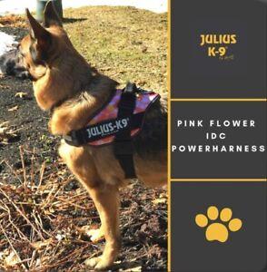 Genuine Julius-K9 IDC Harness & lead Bundle Floral Pink Size 1 23-30kg