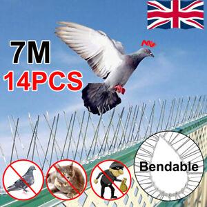 14X 7M Metal Wall Bird Fence Spikes Anti Climb Pigeon Seagull Repeller Deterrent