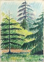 Pw 1950 Sunny Tag IN May Spruce Fir Modern Scandinavian Midcentury Type