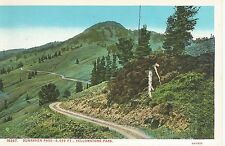 Yellowstone National Park WY Dunraven Pass Postcard 1924