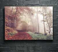 Poster Prints Wall Art on Fade Proof Glass Photo ANY SIZE Autumn Forest p17577