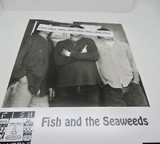 Fish and The Seaweeds San Diego Picture Ocean Beach Pt. Loma California 92107