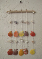 Hanging sea shells ,Home wall decor,Decorative Seashells Hanging Strand ,summer