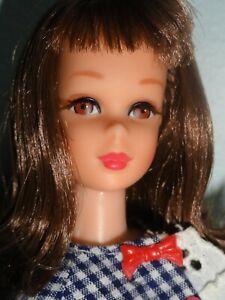 Vintage Barbie Brunette Francie TNT Doll Beautiful Face & Body W/Side Kick #1273