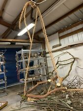 Natural wood perch hanging stand for birds medium parrot Conure Manzanita wood