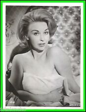 "NYREE DAWN PORTER in ""Pay Now, Live Later"" Original Vintage PORTRAIT 1962"