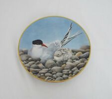 The Danbury Mint Vintage Collectable plates - Waterbird plates - Tern