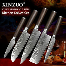 5Pcs Knife Set Kitchen Knives Damascus Steel 67 Layers Lasting Sharp Blade Chef