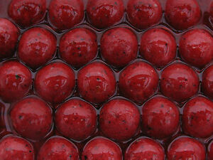 Fishing Bait Boilies Robin Red Flavour in Dip 16mm Red Carp Boilies in Glug
