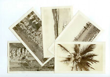 Antique Early RPPC Group Of 5 Images Guantanamo Bay Cuba Soldier In A Palm Tree!