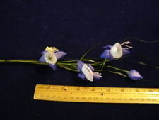 Vintage Millinery Flower Fuschia Ne4 Purple Lavender