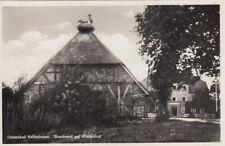 Ostseebad Kellenhusen, Storchnest auf Wintershof ngl F8079