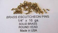"""ESCUTCHEON PINS SOLID BRASS  300 pcs. 1/4"""" X 16 ga. U.S.A. WOOD / LEATHER new"""