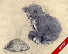 TRAPPED MOUSE IN CAGE & CAT KITTEN PET ANIMAL ART PAINTING REAL CANVAS PRINT