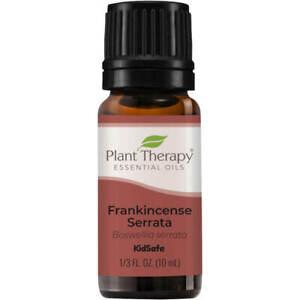 Plant Therapy Frankincense Serrata Essential Oil 100% Pure, Undiluted, Natural