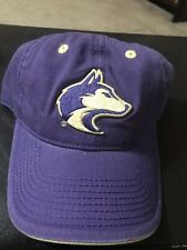 Purple Washington Huskies Hat..By The Game! New With Tags!