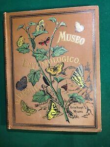 Sordelli Ferdinando Museo Entomologico Le farfalle Milano Hoepli 1885 prima ediz