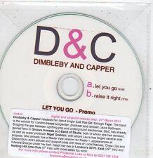 (EV3) Dimbleby & Capper, Let You Go / Raise It Right - 2011 DJ CD
