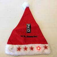 Rare Adult Santa Claus Christmas LED Party WKD Hat