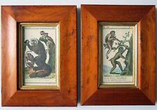 Antique 19th Century FRAMED ORIGINAL HAND COLORED PRIMATE ENGRAVING (2)