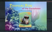 St Kitts 2015 MNH Tropical Fish of Caribbean 1v S/S II Smooth Trunkfish Stamps