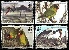 Birds Zambian Stamps (1964-Now)