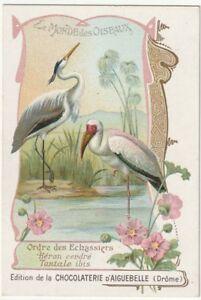 chromo aiguebelle. oiseaux- échassiers / héron cendré & tantale ibis