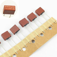 10Pcs Littelfuse 392 Series TE5 Slow Blow Time-Lag Radial Lead Fuses 250V 1A