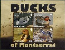 Montserrat-2012 Ducks of Montserrat. Catalog-12.00€