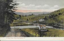 Ox Bow Black River Springfield VT nice postcard not postally used undivided back