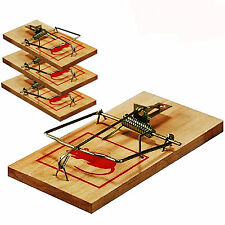 4 Pack tradicionales de madera mouse traps Clásico Control De Plagas Roedores Ratonera