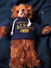 "Green Bay Packers Plush Stuffed 10"" Hoodie Bear     Cute and Cuddly!"