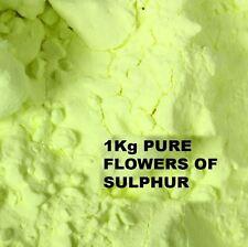 Flores de Azufre En Polvo 1kg - 99,99% De Alta Pureza Sublimado-salud remedio