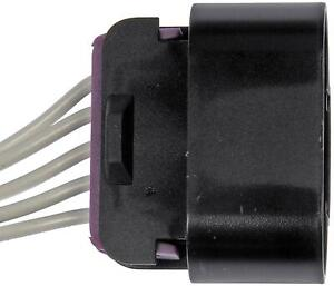 Dorman 645500 Pigtail Or Socket
