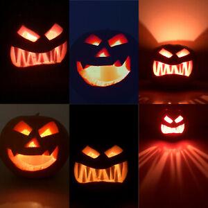 10 semi De Citrouille Géant de Halloween Pumpkin Squash Graines Jack-O'-lantern