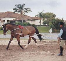 Pessoa Ropes Longeing Training System - Size: HORSE - #12567