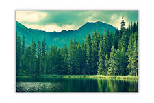 Green Forest and Lake Landscape Poster Wall Prints Home Decoration Art Pictures