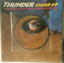 """Thunder - Stand Up (7"""" Picture Disc & Giant Poster) ☆ FREE FAST POST"""