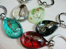 15pcs real insect&grass&stone nice drop Holiday Gift mix style key-chains