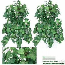 "TWO 36"" Ivy / Grape Ivy Hanging Bush x13 Silk Plants FS"