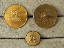 Vintage brass livery button, twin dragon lion, Doughty & Co. London, large 27mm.