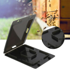 20x Small Bee Hive Beetle Beehive Beetle Trap Case Cover Beekeeping Equipment